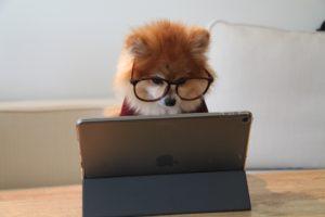 WEBライティングを学んで稼げるようになる方法